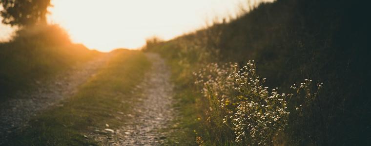 caminar-senderismo-jarama