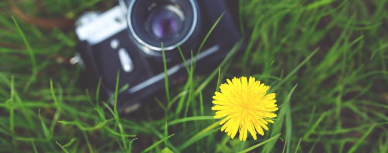 concurso-foto-colores-verano-sanse-2015-cc