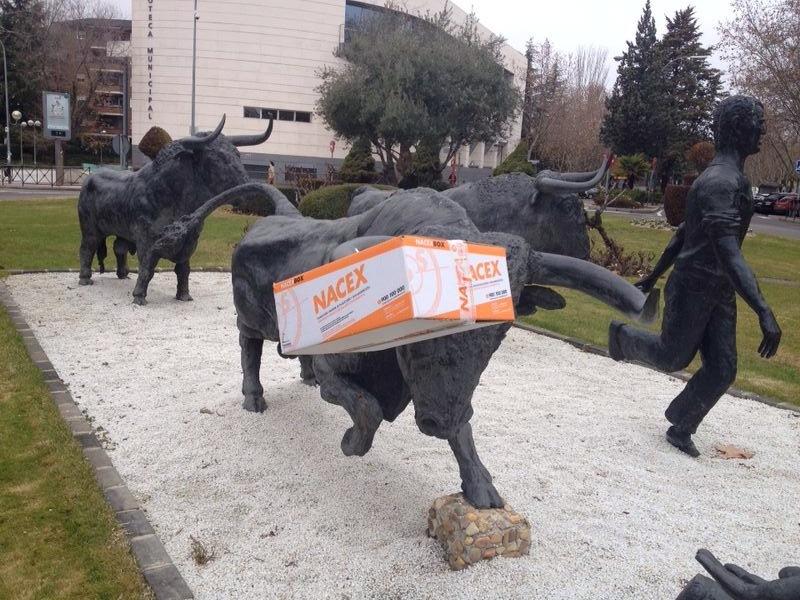 el toro y el paquete